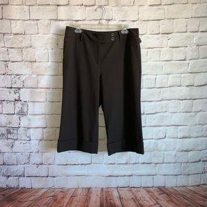 Ann Taylor Capri Brown Pants, Flat Front,  12P